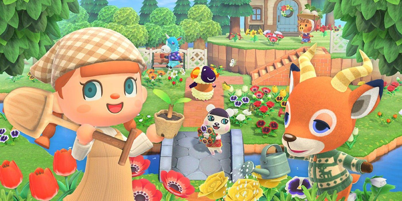 Animal Crossing: Ev Depolama Alanını Artırma
