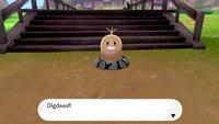 Pokémon Schwert & Schild - Insel der Rüstung: Alle Digdas finden