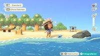 Animal Crossing - New Horizons: Sommermuscheln bekommen & alle Anleitungen