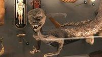 30 WTF-Bilder aus Museen, die euch garantiert Albträume bescheren