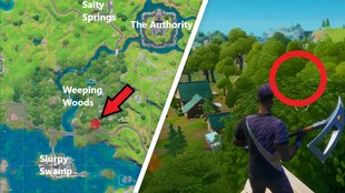 Fortnite: Ringe in der Luft bei Weeping Woods - alle Fundorte