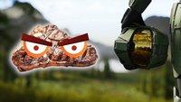 Halo-Betrüger hat sein Bungie-Steak gar nicht verdient