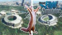 Microsoft Flight Simulator: Spieler verschönern die hässlichsten Orte