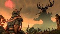 The Elder Scrolls Online: Warum nicht gleich so, Bethesda?