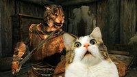 Skyrim-Katzen können eure echten Katzen nicht ausstehen