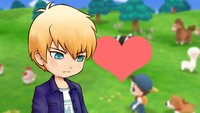 Story of Seasons – Friends of Mineral Town: Gray heiraten