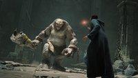 Hogwarts Legacy: Entwickler fällt schwere Entscheidung zum Wohle der Fans