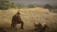 Red Dead Online-Spieler bringt seiner Mietzekatze ein paar beeindruckende Tricks bei
