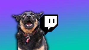 Twitch gnadenlos: Streamer stehen vor einer schrecklichen Entscheidung