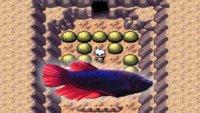 Ein Fisch findet Pokémon-Glitch, der 18 Jahre verborgen blieb