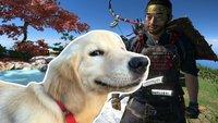 Ghost of Tsushima: Bestes Update wird sogar noch besser