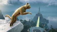 Assassin's Creed Valhalla: Katzentritt finden (Der Tritt einer Katze)