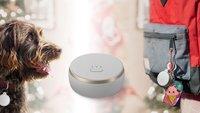 Curve Tracker zu Weihnachten im Angebot: Gadget hilft, Koffer, Schlüssel, Auto oder Haustier zu finden