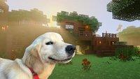 Minecraft bekommt das schönste Update aller Zeiten spendiert – und zwar kostenlos!