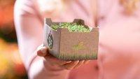 Ohne Plastik: Kaufland setzt auf neue Verpackungen