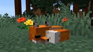 Minecraft: Füchse zähmen und Junge züchten