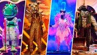 The Masked Singer, Tom Hanks in Geiselhaft und lecker Kochen: Die heutigen TV-Highlights