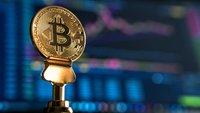 "Linke nimmt Bitcoin-Spenden ins Visier: ""Moralisch fragwürdige Quellen"""