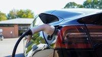 """Tesla erlaubt sich Scherz: Dieser Sprachbefehl geht """"nach hinten"""" los"""