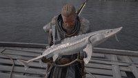 Assassin's Creed Valhalla: Große Störe für Rath Bhride finden