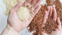 Warum du ein nasses Handy NICHT in Reis trocknen lassen solltest