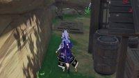 Genshin Impact: Der Weg von Ritou freischalten (Inazuma-Quest)