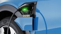 Audi-Chef will E-Autos stärken: Mehr Steuern für Benziner und Diesel