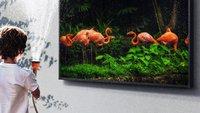 The Terrace: Samsungs verrückter Outdoor-TV für den Garten