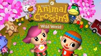 Animal Crossing - Warnung vor Hacker Angriffen bei Animal Crossin Wild World