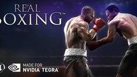 Real Boxing für Tegra: Heute für nur 89 Cent im Play Store