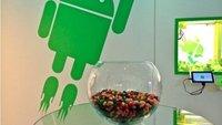 Jelly Bean: Android 4.1 bestätigt, zuerst auf Galaxy Nexus