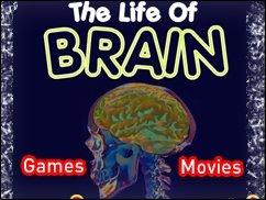 Allwissende Movies &amp&#x3B; Games