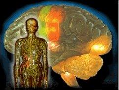 Big Brain AßMAN