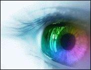 Big Brother is watching you - Wie sicher sind meine Daten?