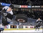 Cool wie Eis - NHL 2007