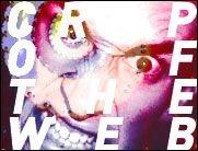 Das pure Video Crap of the Web