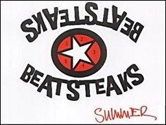 Ein Sommer mit den Beatsteaks