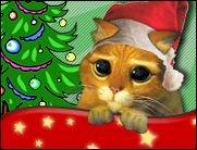 Ein traurig Weihnachtsgedicht!