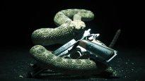 Hitman 5 - Teaser vor offizieller Ankündigung