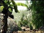 Living Hell: No Name Island 2 - Crysis Mod