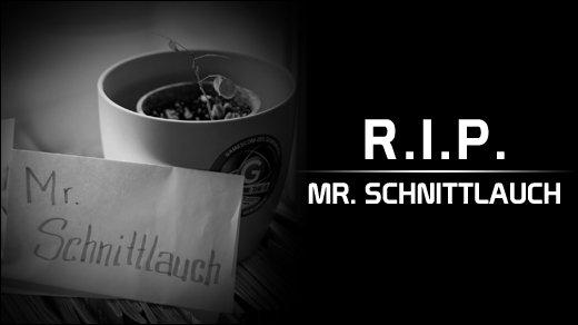 Mr. Schnittlauch - Trauertag in der GIGA-Redaktion