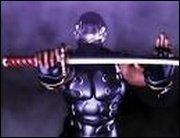 Ninja Gaiden 2 - Ab Juni darf geschnetzelt werden
