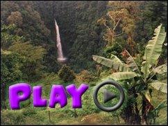 PLAY im Urwald