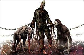 Silent Hill: Origins Probleme aufgetaucht