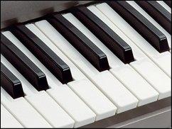 ROFL TV: Der supergeile Keyboarder