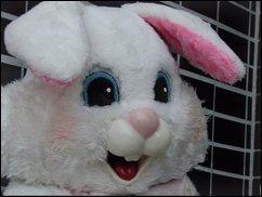 ROFL TV:  Ostern, ein wenig später