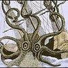 Seeungeheuer - Mythos oder Realität?
