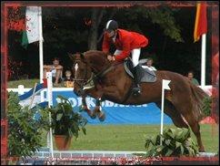 Sport in Deiner Nähe: Pferdesport