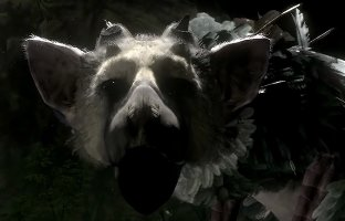The last Guardian  - ICO und Shadow of the Colossus kommen später