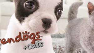 Nintendogs +Cats